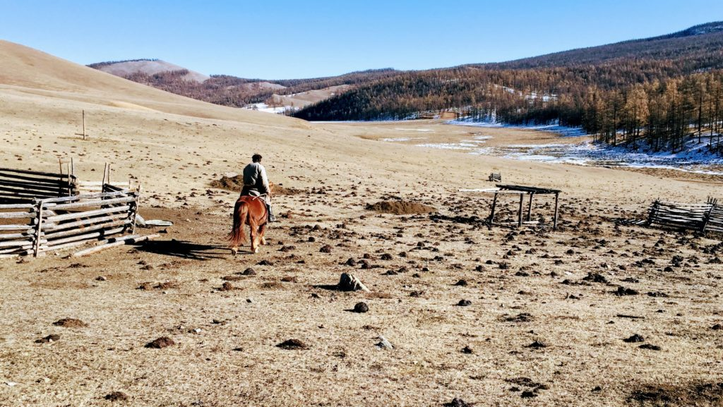 Beautiful Mongolian landscapes